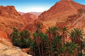 deserto caldo