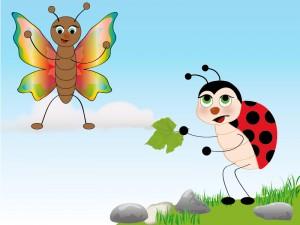 farfalla e coccinella-01