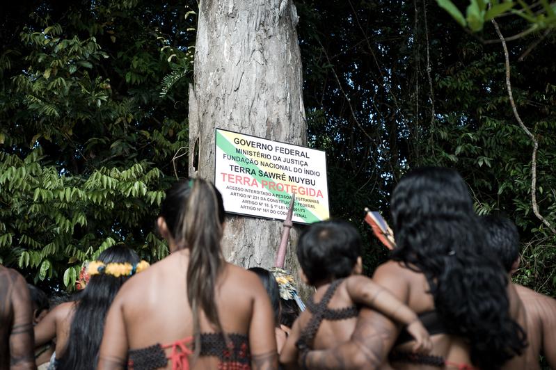 Munduruku and Greenpeace Demarcate Indigenous Lands in the Heart of the Amazon Povo Munduruku inicia sinalização da Terra Indígena Sawré Muybu